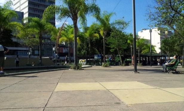 Palmeiras (Foto: Rafael Junqueira/Mundo Pauta)